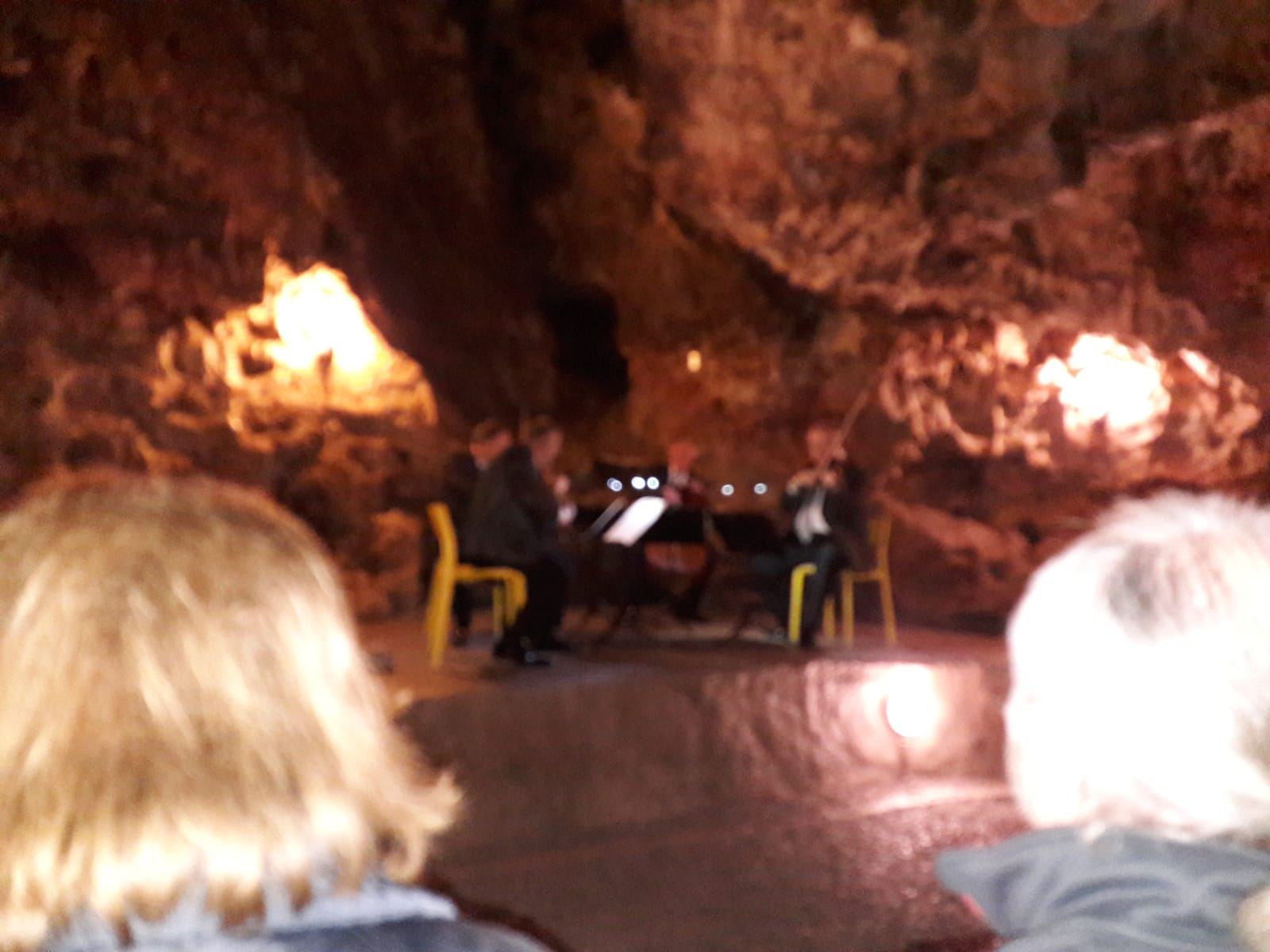 Il concerto del quartetto d'archi di Brno