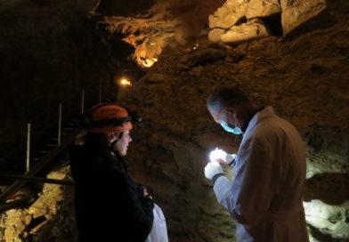 Le grotte di Villanova, fra concerti e speleoterapia