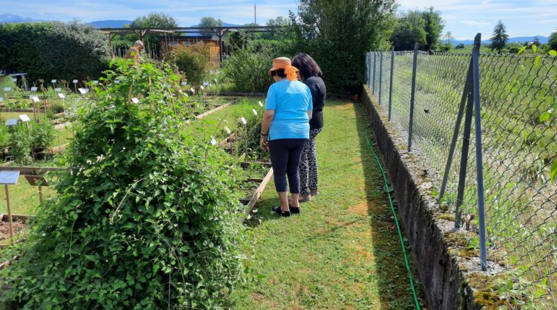 Alcuni cittadini interessati al nostro orto botanico